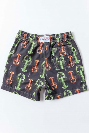 Shorts Agua Lobster Bicolor