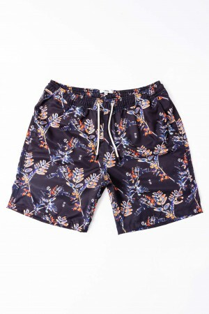 Shorts Agua Ramos Orange