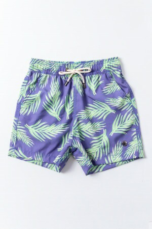 Shorts Agua Eletric Blue